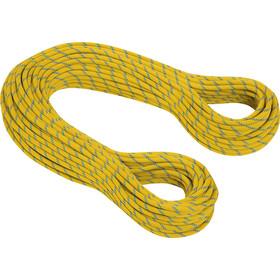 Mammut 8.0 Phoenix Dry Rope 50m yellow